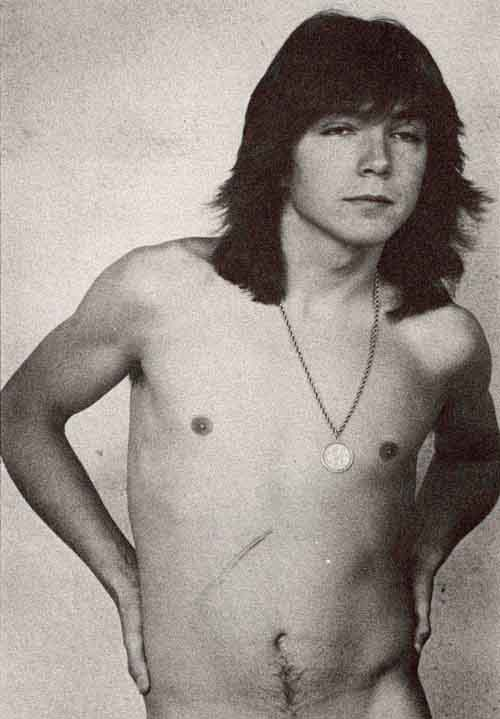 Opinion you Nude pictures of david cassidy remarkable